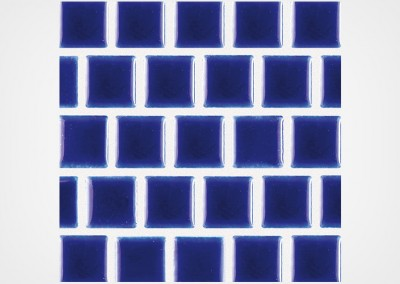 SS-101 – ROYAL BLUE 1X1