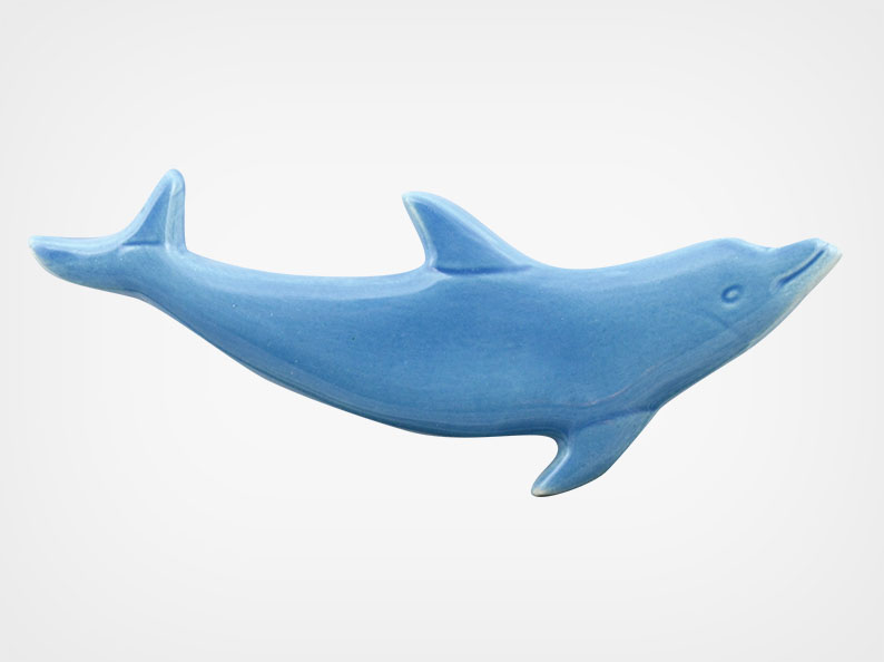 Dolphin Mini Up – Blue – 4×2