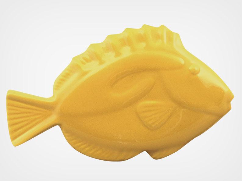 Fish – Sand – 5×3