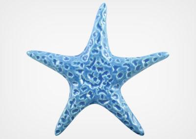 Starfish Smooth – Blue – 5×5
