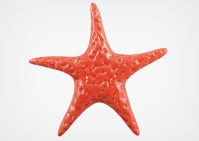 Starfish Smooth – Red – 5×5