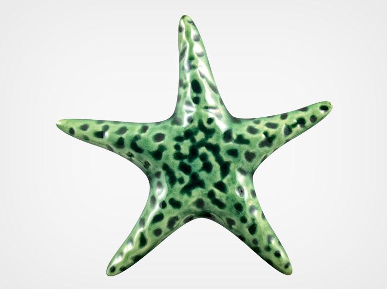 Starfish Smooth – Teal – 5×5