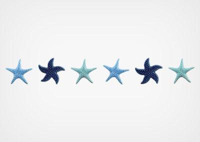 Starfish Blend – Step Marker – Blue – 24×3