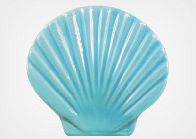 Seashell – Aqua – 4×5