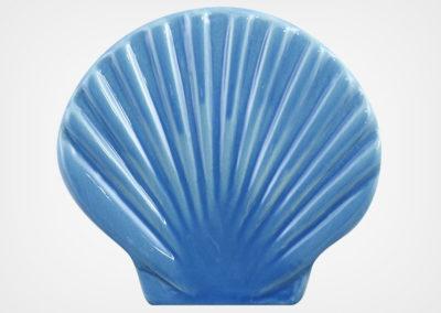 Seashell – Blue – 4×5