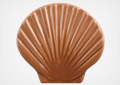 Seashell – Brown – 4×5