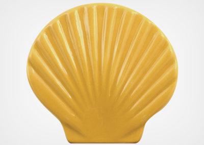 Seashell – Sand – 4×5