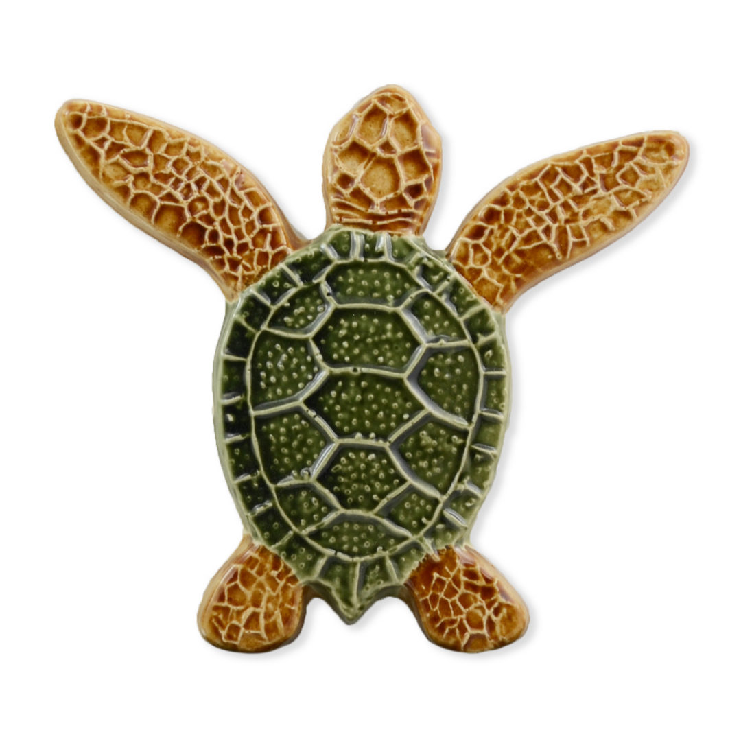 Turtle Both Up – Multi – 5×5