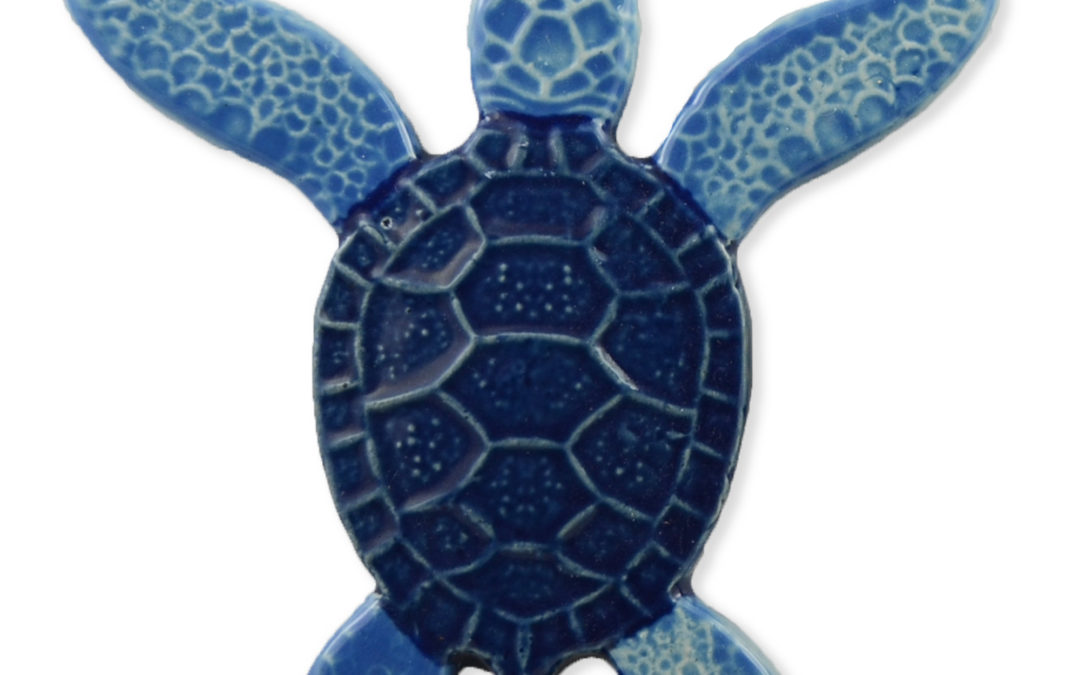 Turtle Both Up – Blue – 5×5