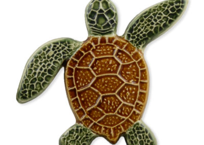 Turtle Right Up – Natural – 5×5